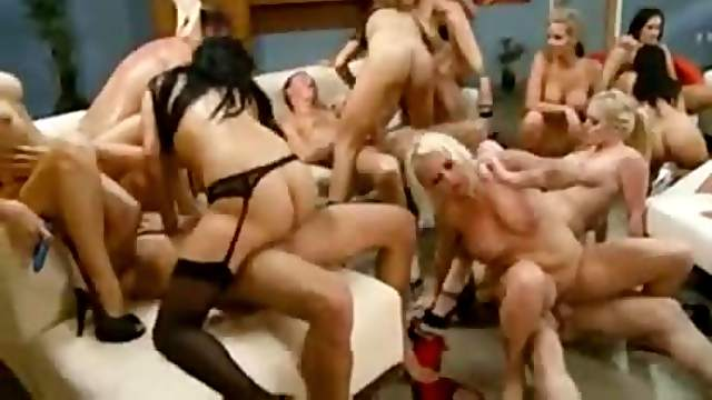 Huge orgy with seriously hot pornstars