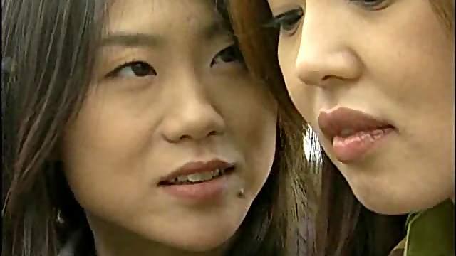 Japanese ladies having lesbian sex